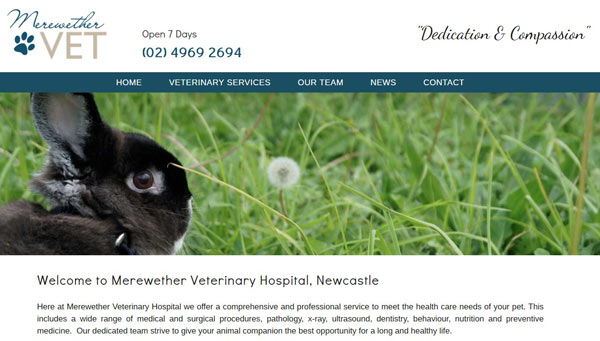merewether vets website design screenshot